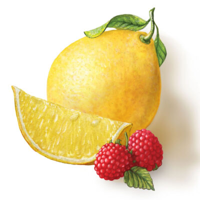 lemon and raspberry illustration for Torie and Howard Candy by Illustrator Priscilla Prentice